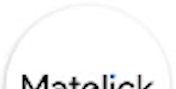 Matelick - Soft Material Corporate WordPress Theme