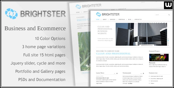 Clean Website Template for Business and Ecommerce - Business Corporate