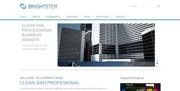 Clean Website Template for Business and Ecommerce
