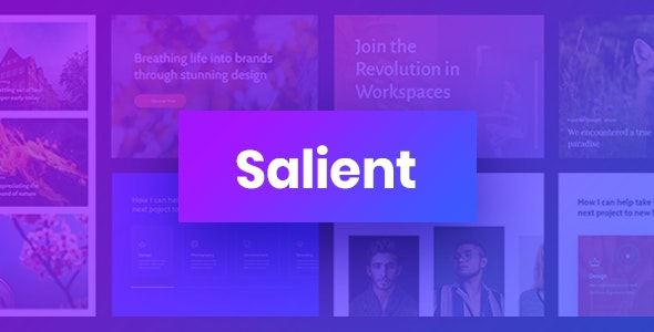 Salient - Responsive Multi-Purpose Theme by ThemeNectar