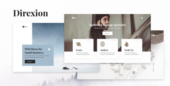 Direxion - Unique High Converting Landing Page - Marketing Corporate
