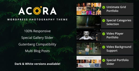 Acora - Photography WordPress Theme