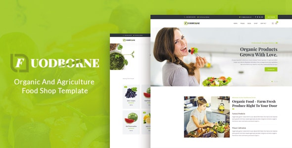 Fuodborne - Organic & Agriculture Food Shop Template - Food Retail