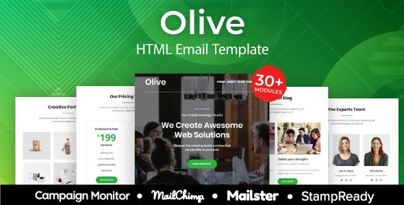 Olive - Multipurpose Responsive Email Template 20+ Modules - Mailster & Mailchimp - Newsletters Email Templates