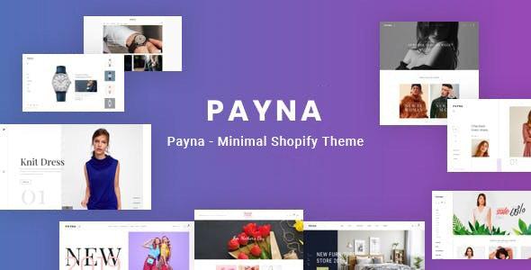 Payna Clean, Minimal Shopify Theme