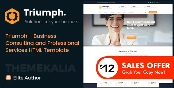Triumph - Business Consulting and Professional Services HTML Template - Business Corporate
