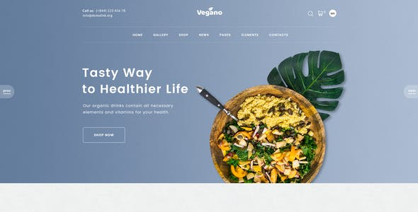 Vegano - Organic Food Store PSD Template