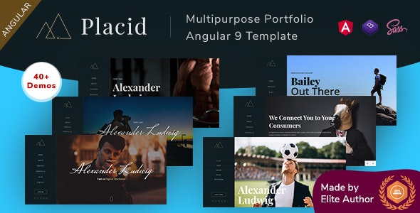Placid - Angular 9 Multipurpose Portfolio - Portfolio Creative