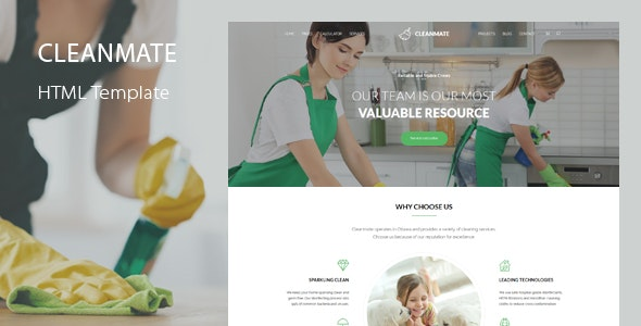 CleanMate - Cleaning Company Maid Gardening Template - Business Corporate