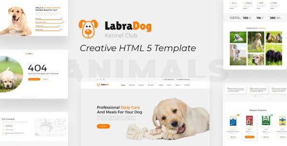 Download LabraDog - Pet Care HTML Template