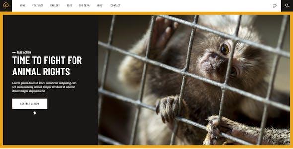 Impacto Patronus - Petitions & Social Activism Template Kit