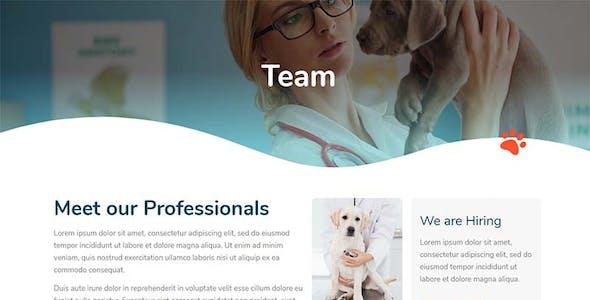 Med Pets - Template Kit for Elementor