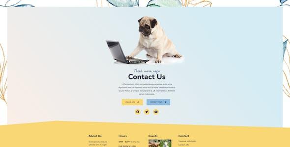 Animal Sanctuary - Non-Profit Template Kit