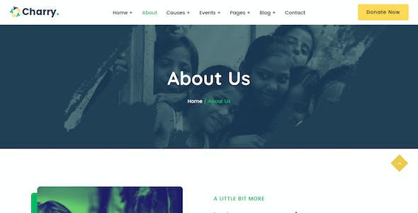 Charry - Charity & Fundraising HTML Template