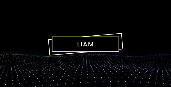 Download Liam - Creative Personal Portfolio