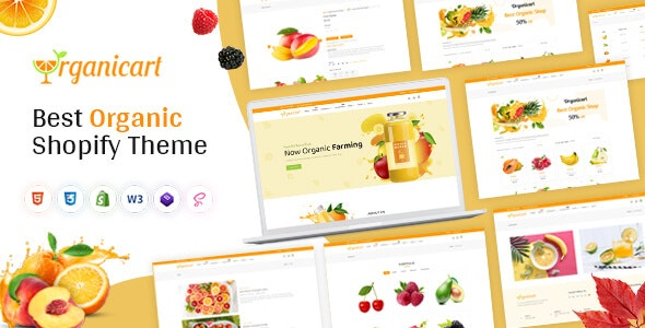 Organickart - Responsive Shopify Theme - Health & Beauty Shopify