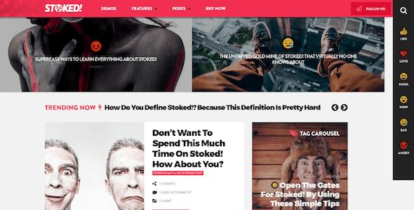 Stoked! - Irreverent Viral Magazine and Personal Blog WordPress Theme