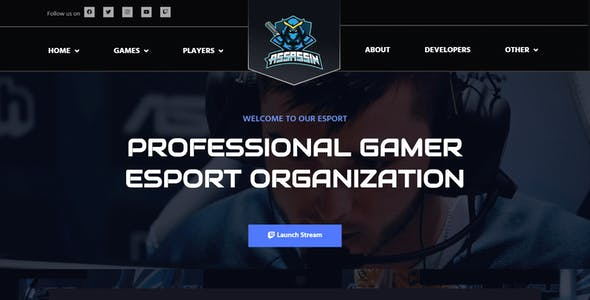 Assasin | eSport & Gaming Elementor Template Kit