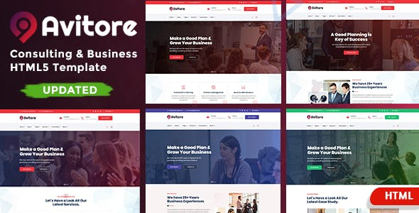 Consulting Business - Avitore