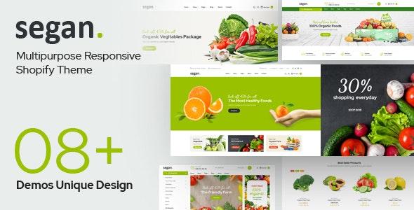 Segan - Multipurpose Sections Shopiy Theme - Shopping Shopify