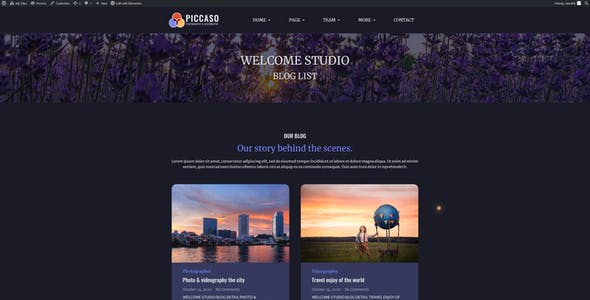Piccaso - Photography Elementor Template Kit