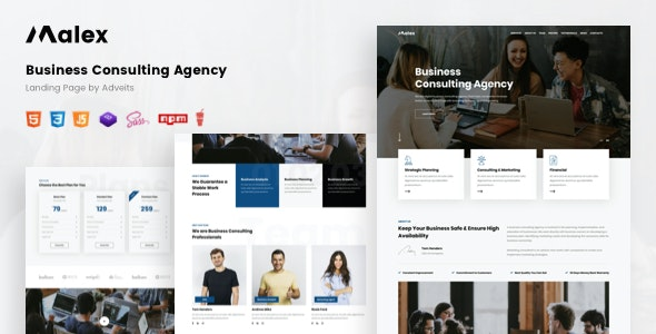Malex - Business Consulting Agency Landing Page - Business Corporate
