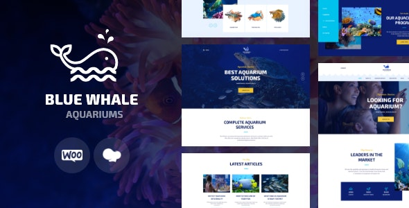 Aqualots | Aquarium Installation and Maintanance Services WordPress Theme - Retail WordPress