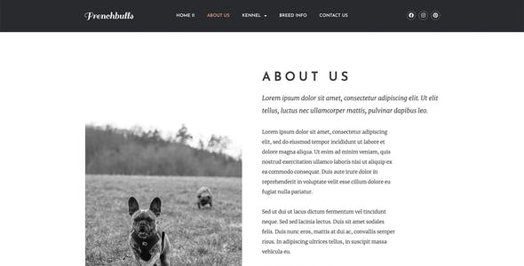 Frenchbulls - Dog Breeder Elementor Template Kit