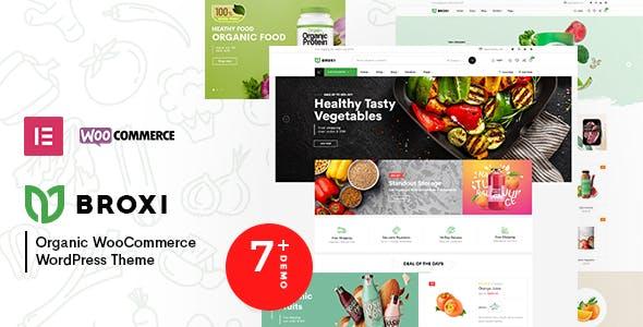 Broxi – Organic & Food WooCommerce WordPress Theme