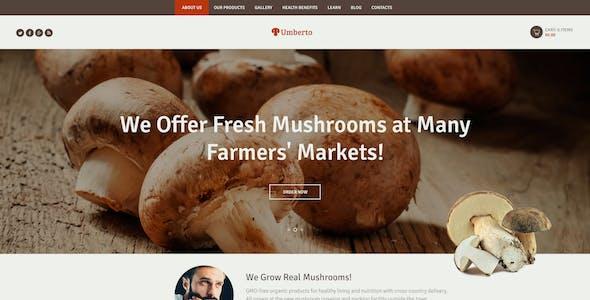 Umberto - Mushroom Farm & Organic Products Store WordPress Theme