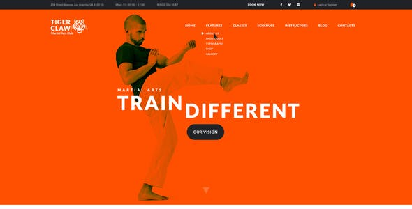 Tiger Website Templates From Themeforest