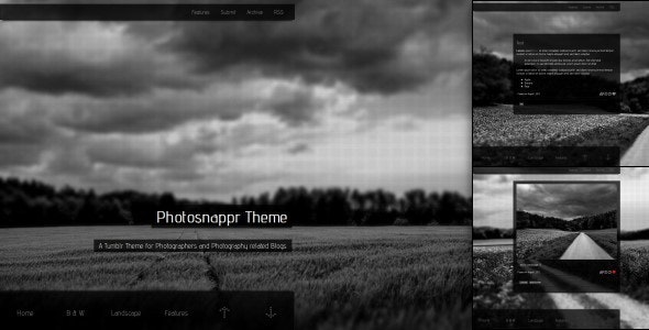 Photosnappr, a Tumblr Theme for Photographer - Blog Tumblr