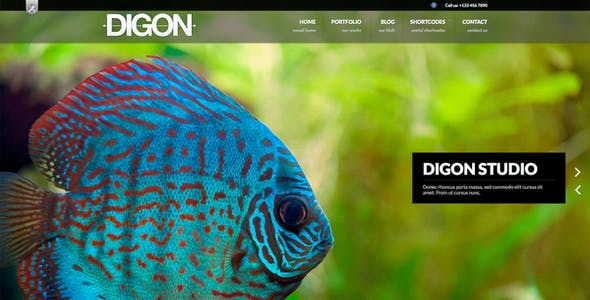 Digon | Photography Theme for WordPress