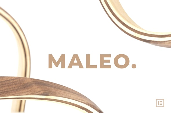 Maleo - Minimal Home Decor & Furniture Template Kit - Shopping & eCommerce Elementor