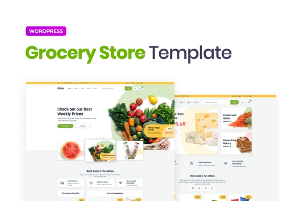 Disho – Grocery Store Elementor Template Kit - Shopping & eCommerce Elementor