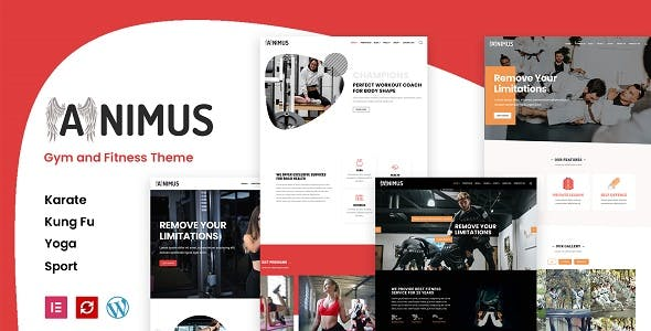 Animus - Gym and Fitness Theme