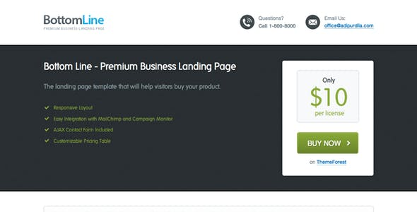 Bottom Line - Premium Business Landing Page