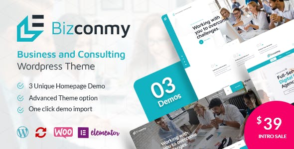 Bizconmy - Business and Consulting WordPress Theme