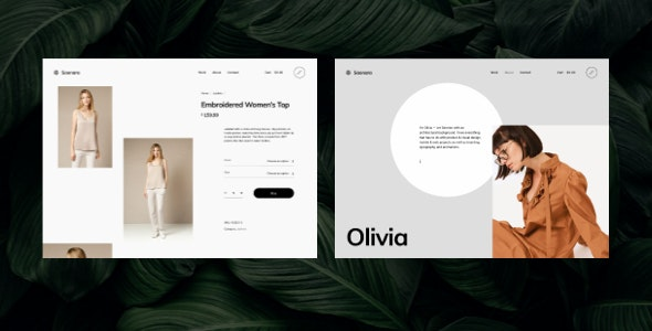 Saonara - Ajax Powered Multi-Concept WordPress Theme - Portfolio Creative