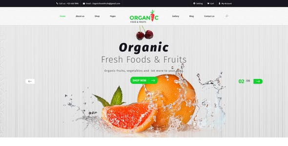 Organic Food and Fruits Template