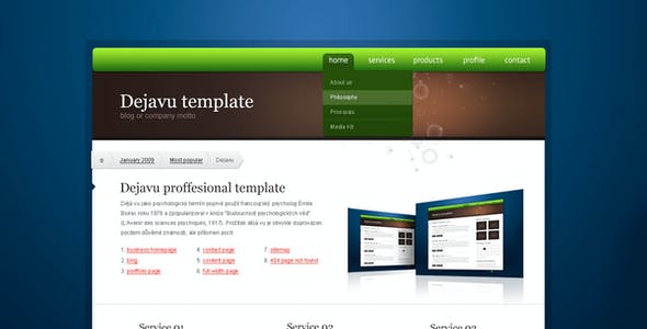 Dejavu professional HTML/CSS theme