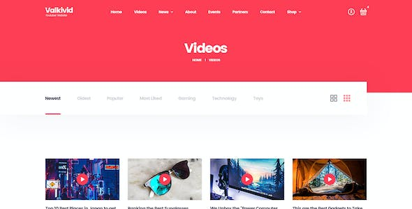 Valkivid - Streamer and Youtuber PSD Template