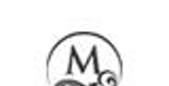 MAGNOLIA - Hotel Booking WordPress Theme