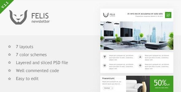 Felis Newsletter - Email Templates Marketing