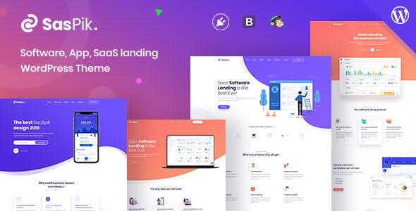 SasPik   Landing WordPress theme