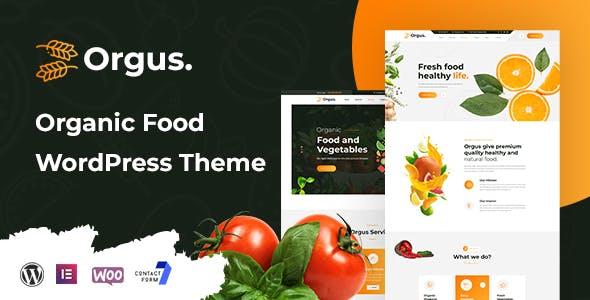 Orgus - Organic Food WooCommerce WordPress Theme