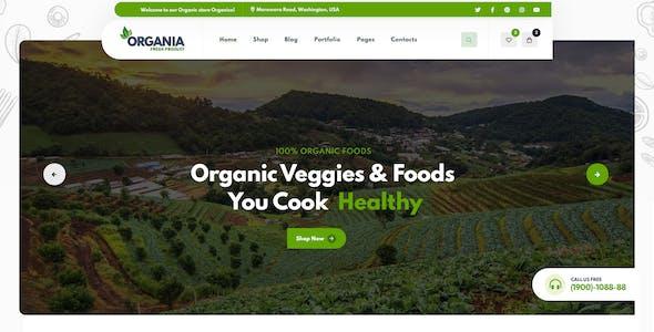 Organia - Organic Foods Store PSD Template