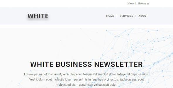 White - Responsive Email Newsletter