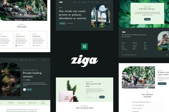Ziga - Healer & Life Coach Elementor Template Kit - Health & Medical Elementor