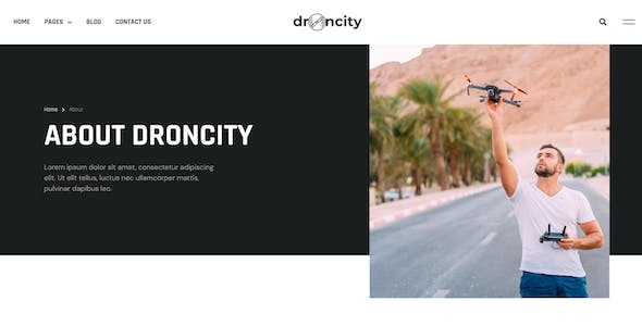 Droncity - Drone Video & Photography Elementor Template Kit